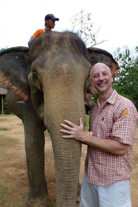ELEPHANT RIDE 30