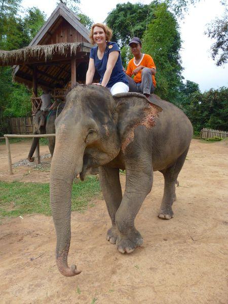 ELEPHANT RIDE 39