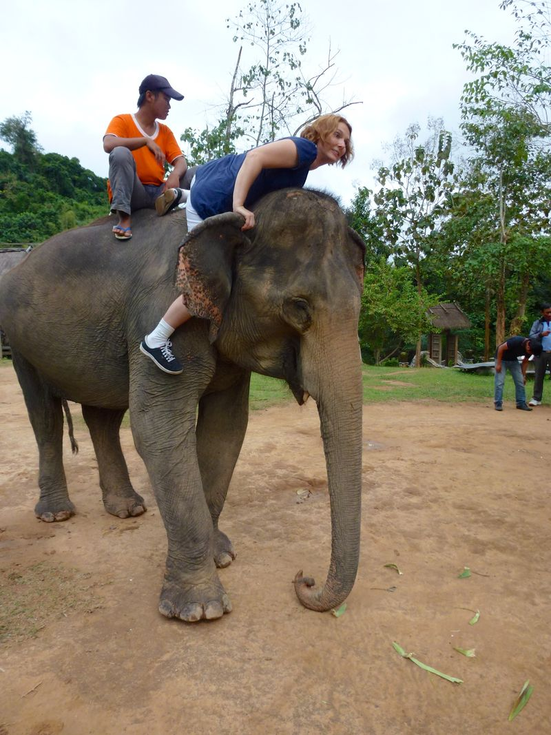 ELEPHANT RIDE 42