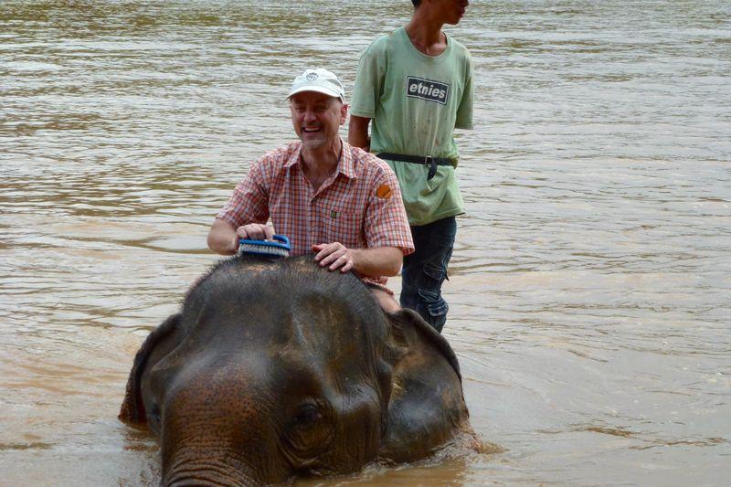 ELEPHANT RIDE 55