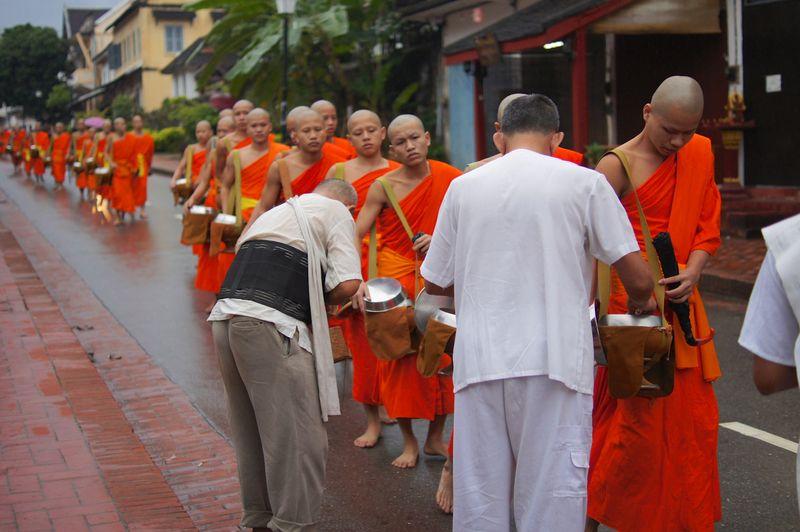 Monk procession 5