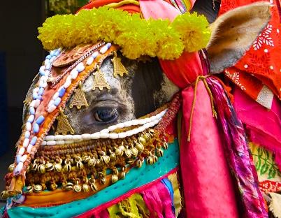 Bangalore India 2