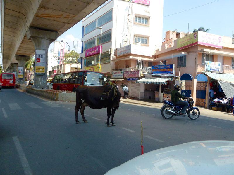 Bangalore India 34