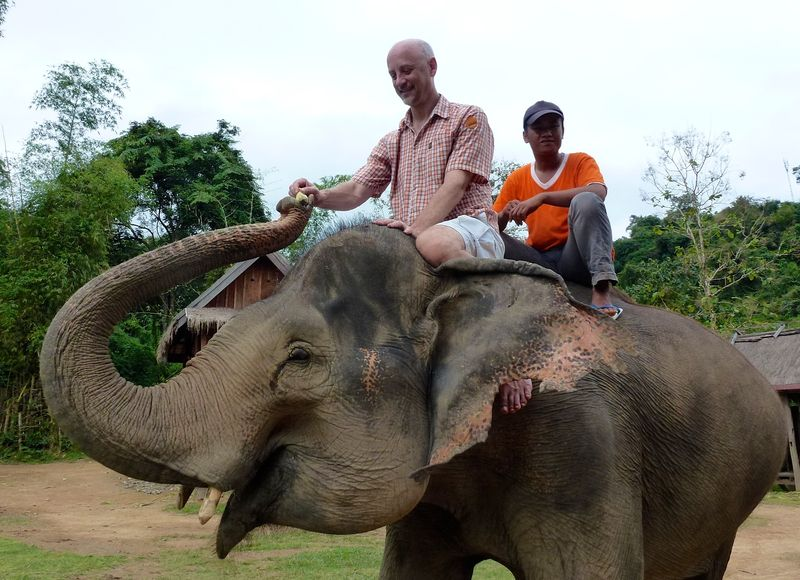 ELEPHANT RIDE 27