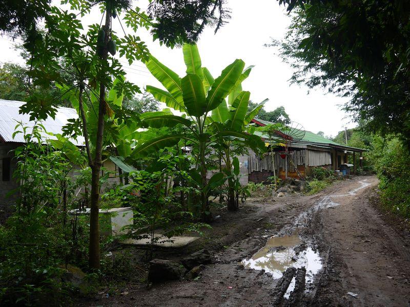 Laos 78