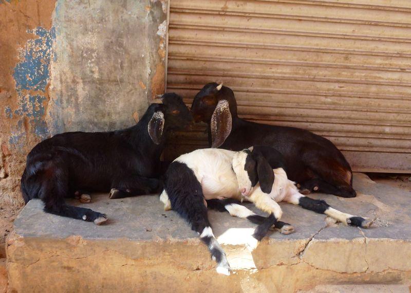 Bangalore India 61
