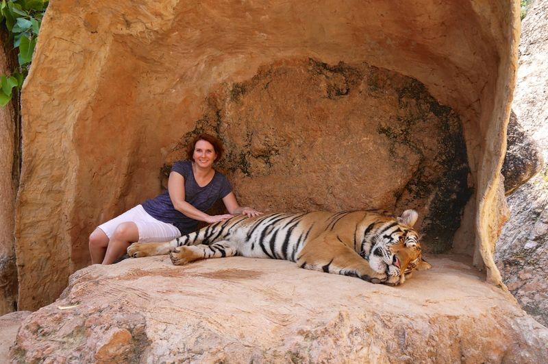 Tiger park 16