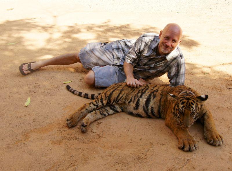 Tiger park 11