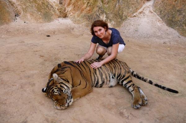 Tiger park 14