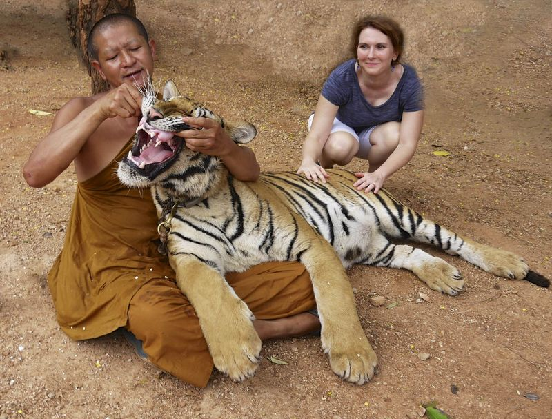 Me and the tiger