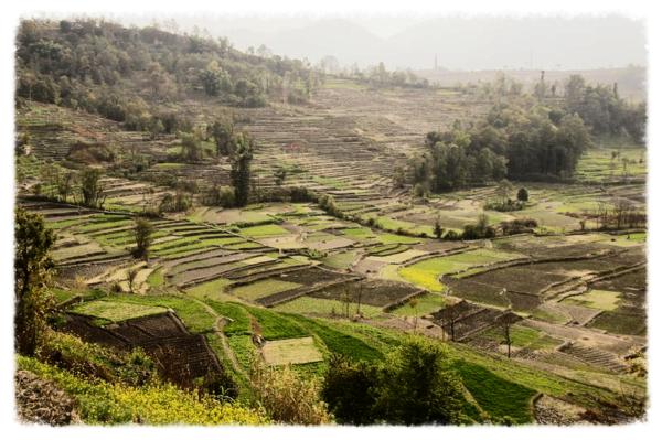 Nepal d camera 216
