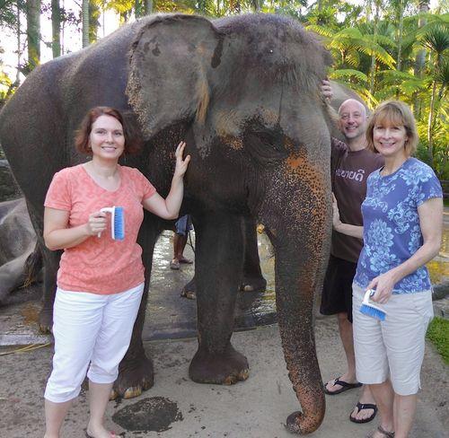 Bali elephants 1