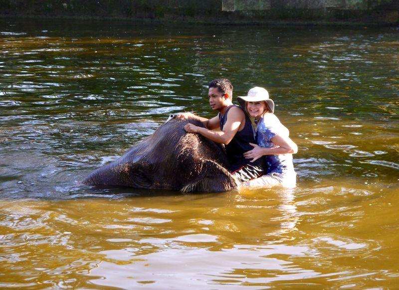 Bali elephants 6
