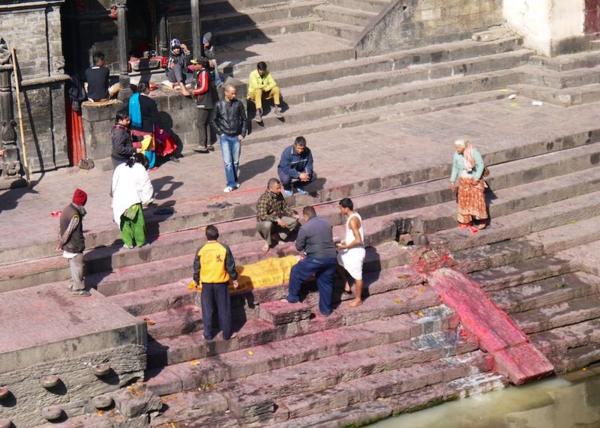 Nepal pink 160