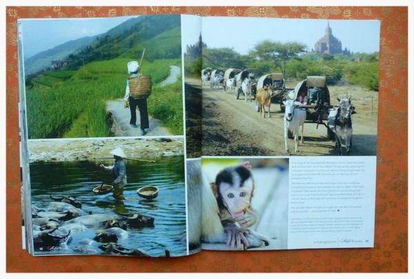 Magazine 1 (3)