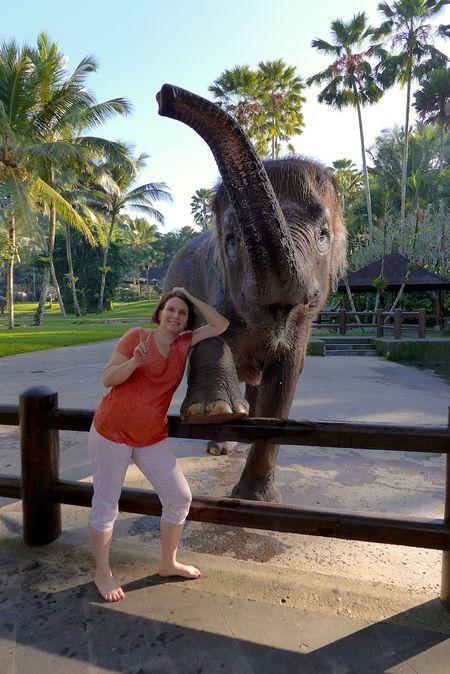 Bali elephants 15
