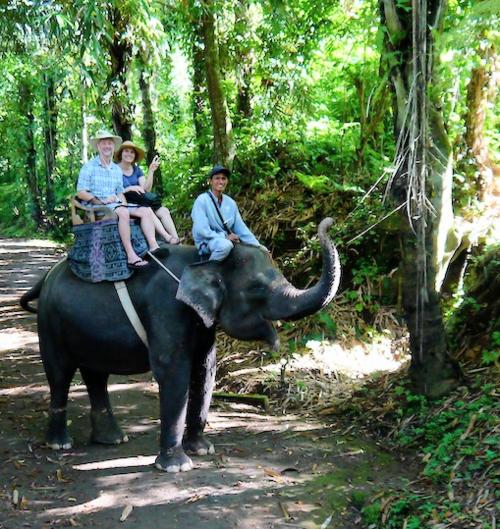 Bali elephants 28