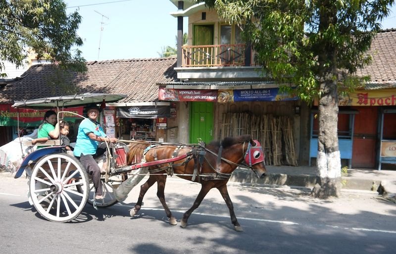 Yogyakarta borobudura 16