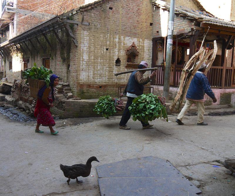 Nepal 037