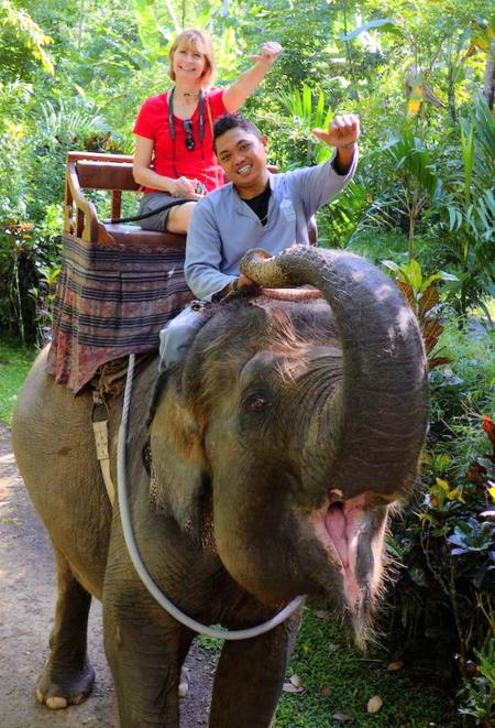 Bali elephants 27