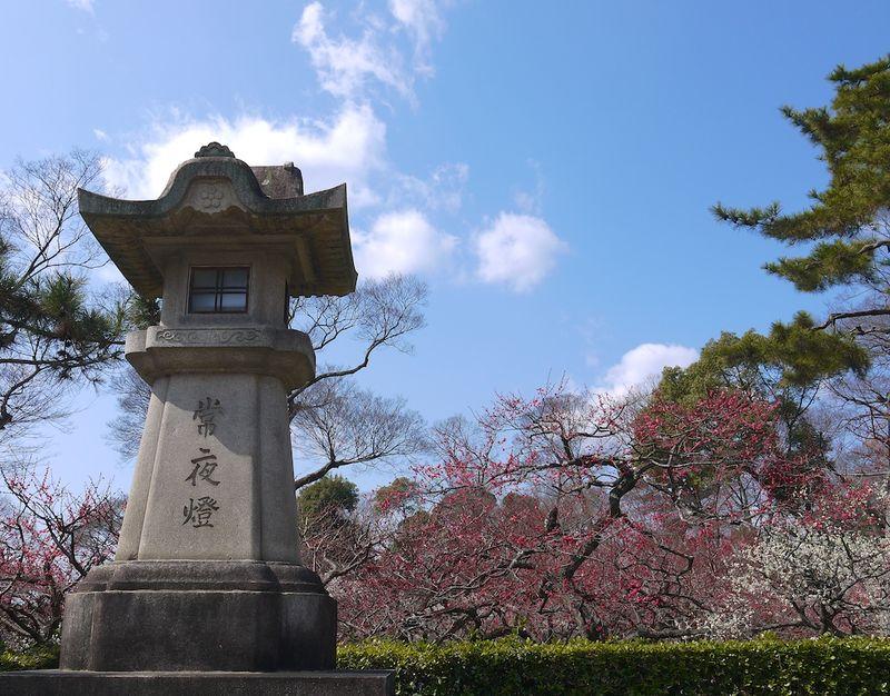 Japan 2014 53
