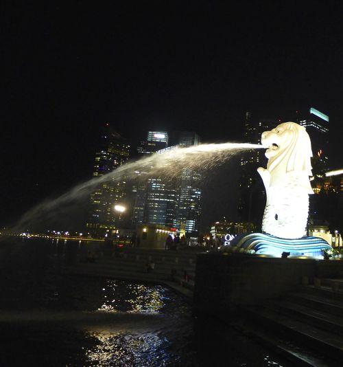 Singapore night 89