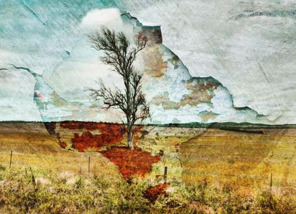 Tree2b