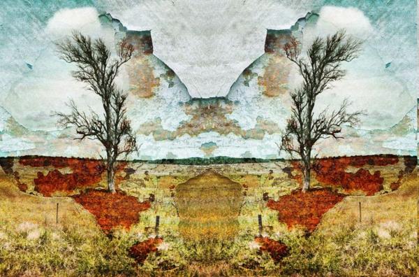 Tree6_edited-1