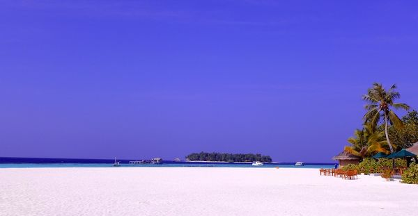 With love - the maldives 26
