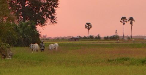 Cambodia girls trip 74