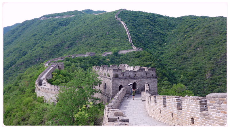 Great wall 2016 17
