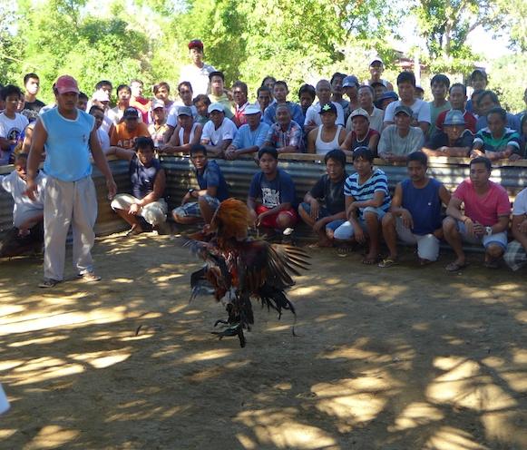 Philippines 2014 58