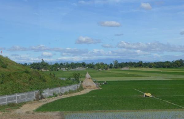 Philippines 2014 25