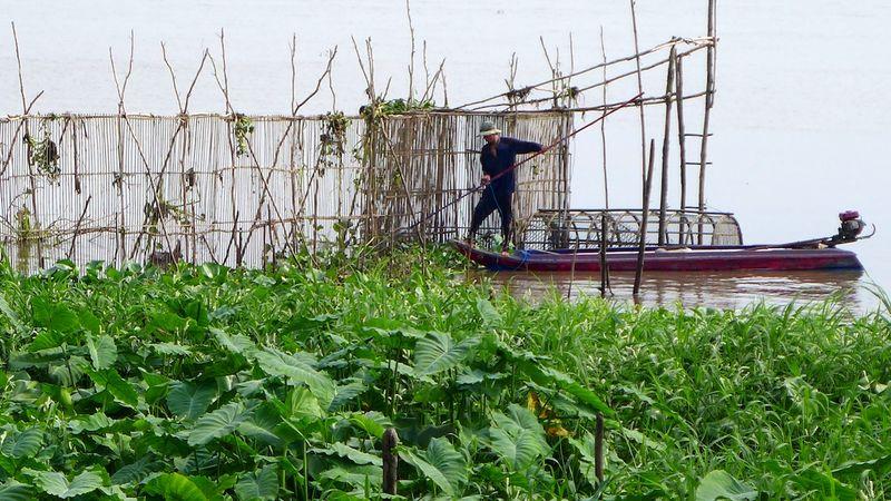 MeKong Delta 2014 12