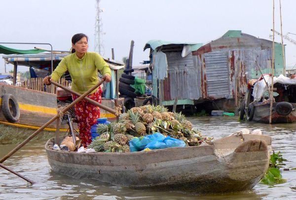 MeKong Delta 2014 31
