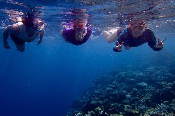 Snorkle - the maldives 1