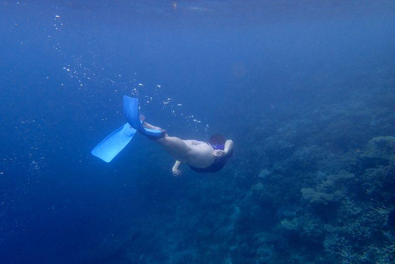 Snorkle - the maldives 7