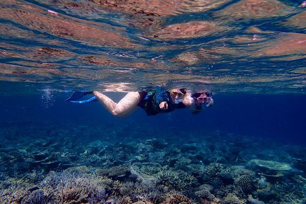 Snorkle - the maldives 14
